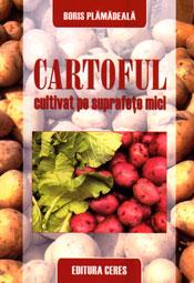 Cartoful cultivat pe suprafete mici