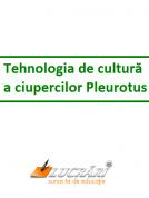 Tehnologia de cultura a ciupercilor Pleurotus