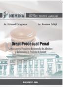 Drept procesual penal. Sinteze - Ed. a II-a, 2010